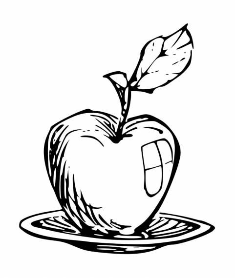 Apple Doodle Drawing PNG Transparent SVG Vector