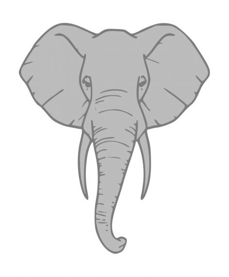 Elephant Head Clipart PNG Transparent
