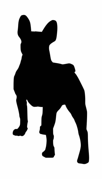 French Bulldog Silhouette PNG Transparent SVG Vector