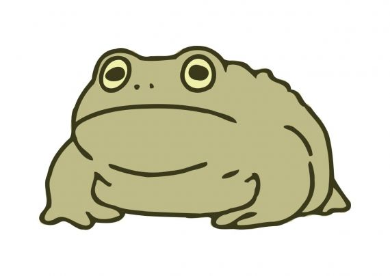 Large Toad Clipart PNG Transparent