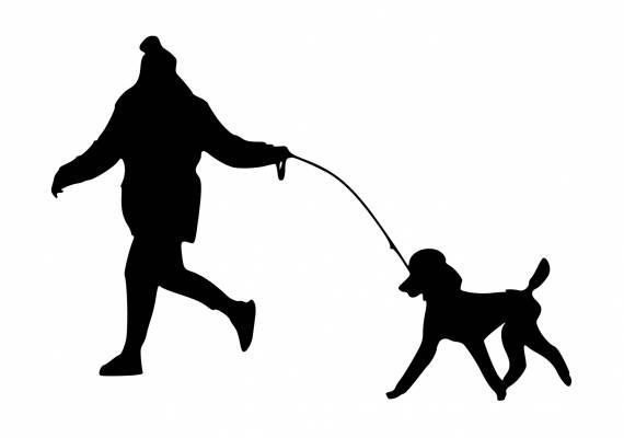 Person Walking Dog Running PNG Transparent SVG Vector