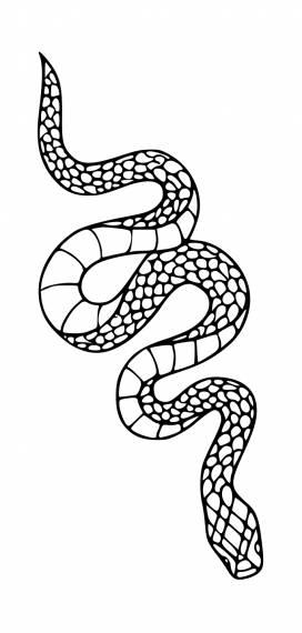 Snake Tattoo PNG Transparent SVG Vector