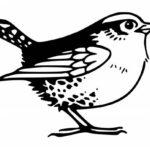 Little Bird Drawing PNG Transparent SVG Vector
